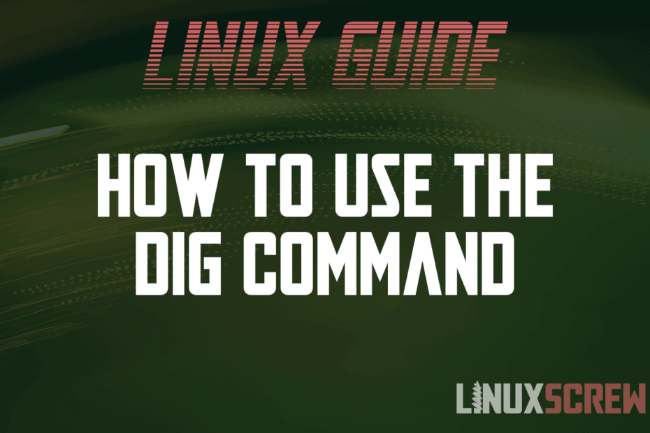 How to Use the Dig Command